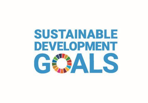 創業当時から続く杉養蜂園 SDGsの取り組みの紹介サイトが完成しました。